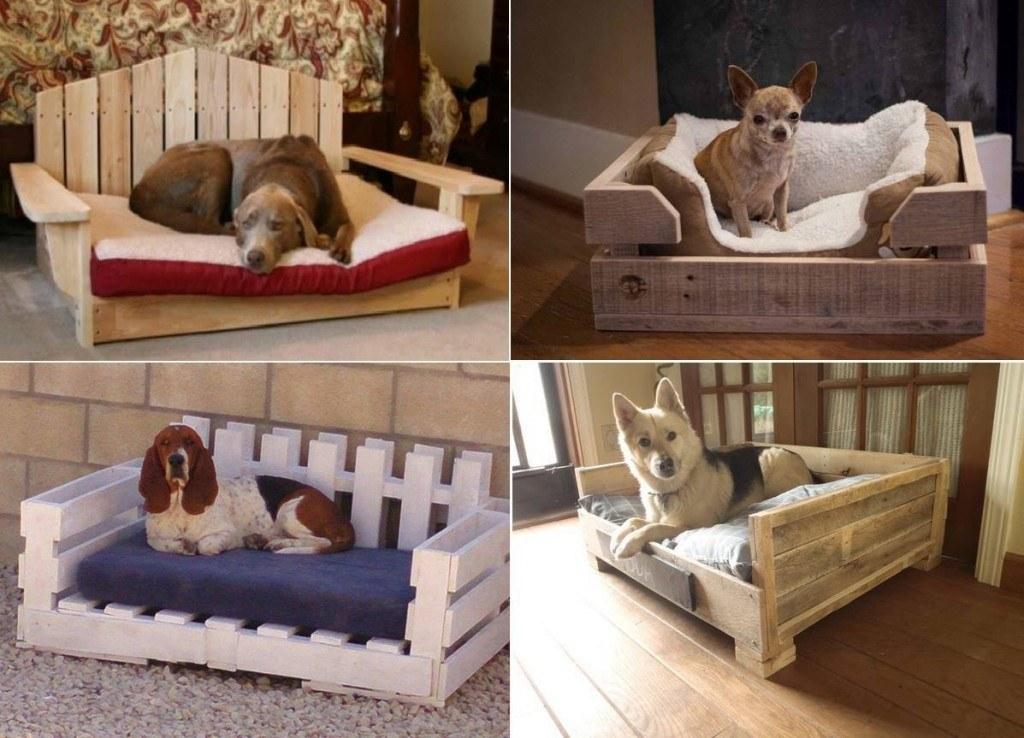 10 idee originali cucce per cani e gatti14