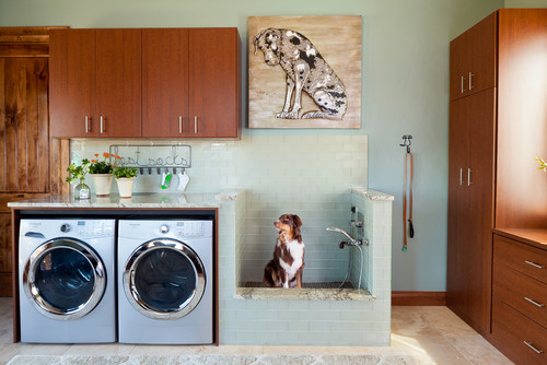 arredamenti per cani design
