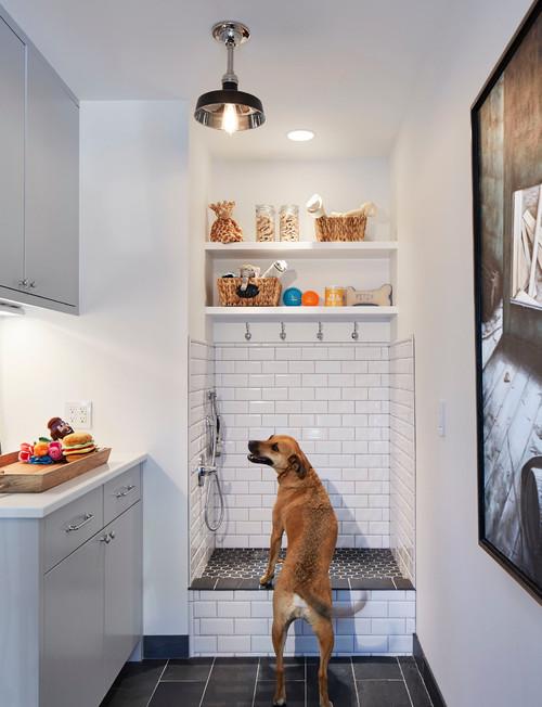arredamenti per cani design2