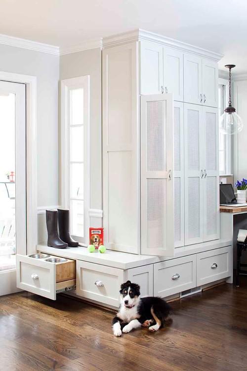 arredamenti per cani design3