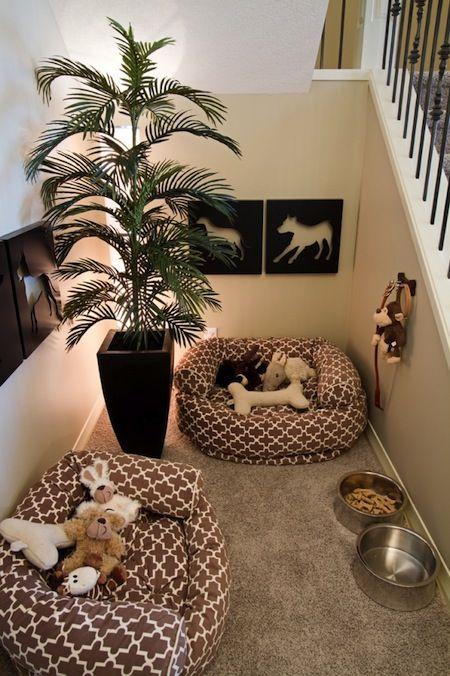 arredamenti per cani design5