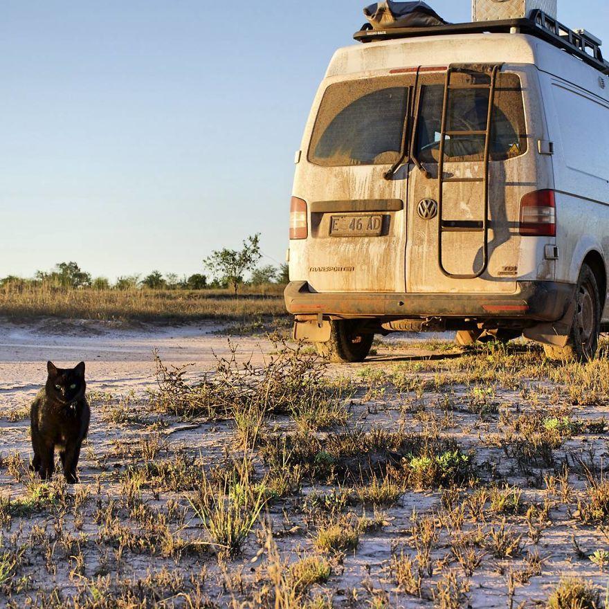 fa il giro dell'Australia con gatto in camper7