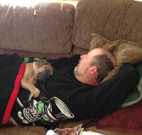 papà inseparabili dai loro cani2