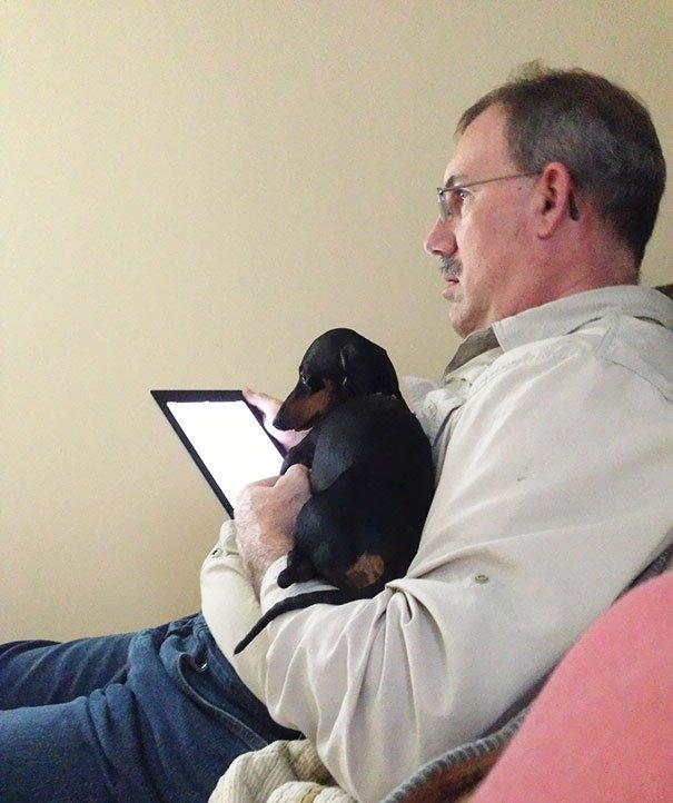 papà inseparabili dai loro cani4