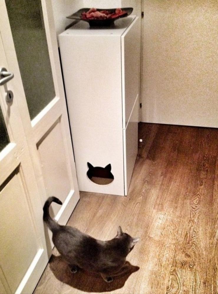 soluzioni per nascondere la lettiera del gatto14