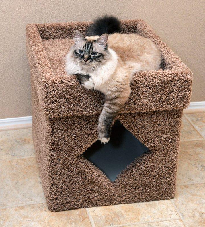soluzioni per nascondere la lettiera del gatto24