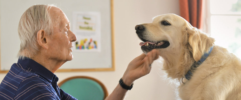 cane e anziano in pet therapy
