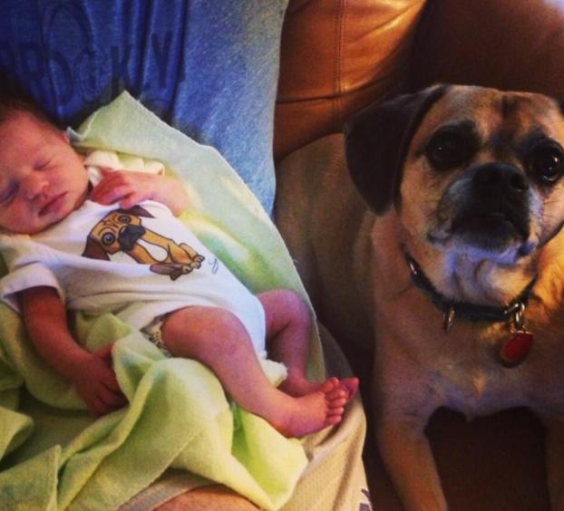 cani e neonati foto10