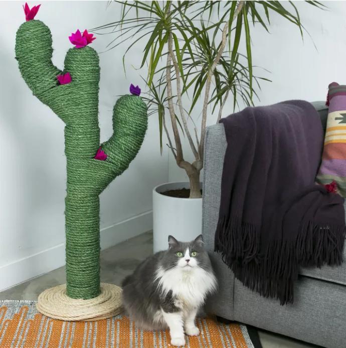 tiragraffi per gatti fai da te