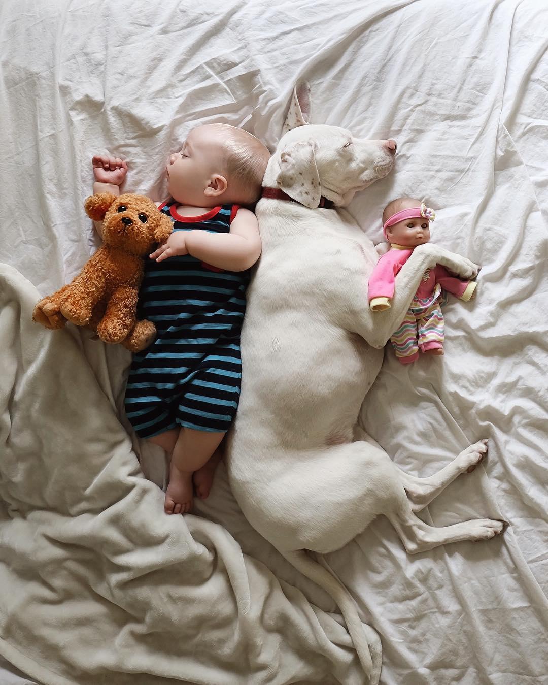 cane dorme con la bambina2