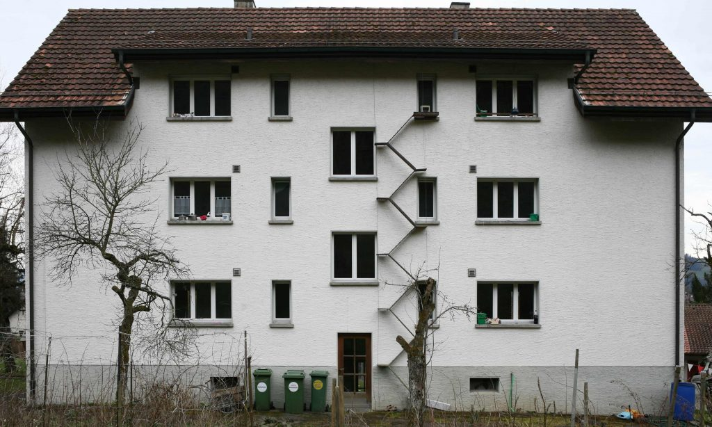 scale per gatti su case2