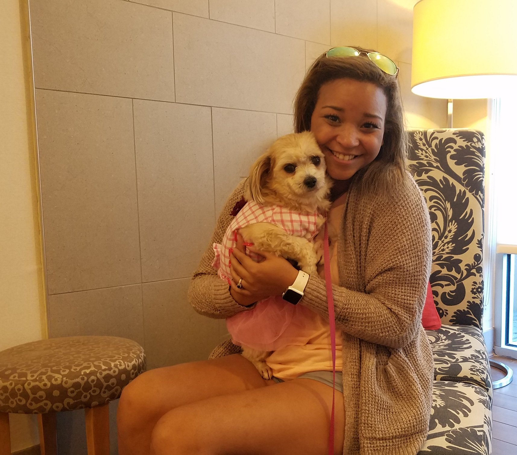 hotel accoglie cani randagi mississipi